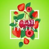 Verse Vruchten Achtergrond met Aardbei en Cherry Organic Healthy Food Concept Vector Illustratie