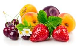 Verse vruchten en bessen in stilleven met groene bladeren Stock Afbeeldingen