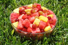 Verse vruchten op het gras stock foto's