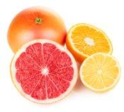 Verse vruchten oranje citroengrapefruit in besnoeiing Stock Afbeeldingen