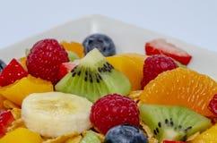 Verse vruchten salade royalty-vrije stock foto