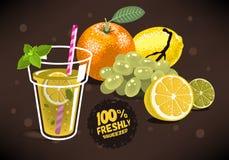 Verse Vruchten voor Gedrukt Juice With An Orange, Citroen, Kalk, Gra Stock Afbeelding