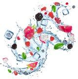 Verse vruchten in waterplons Stock Fotografie