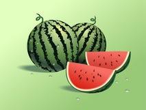 Verse watermeloenen Stock Afbeelding