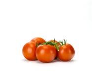 Verse wijnstok gerijpte tomaten Royalty-vrije Stock Fotografie