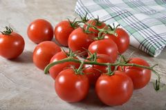 Verse wijnstok rijpe tomaten stock foto's