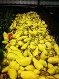 Verse witte Spaanse pepers stock afbeelding