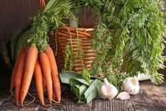 Verse wortel en ingrediënten Stock Afbeeldingen