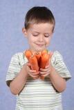 Verse wortelen Stock Afbeelding
