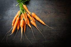 Verse wortelen Royalty-vrije Stock Afbeeldingen
