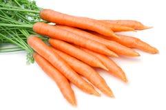 Verse wortelen royalty-vrije stock afbeelding