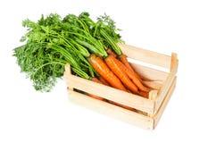 Verse wortelen in een houten doos Royalty-vrije Stock Fotografie