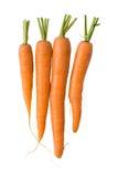 Verse wortelen op wit Royalty-vrije Stock Afbeelding