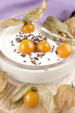 Verse yoghurt met physalis royalty-vrije stock foto's