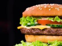 Verse yummy geroosterde burgers op zwarte achtergrond Vleespasteitje, tomaten, komkommer, sla en sesamzaden Snel voedsel stock foto