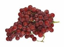 Verse zaadloze rode druiven Royalty-vrije Stock Afbeeldingen