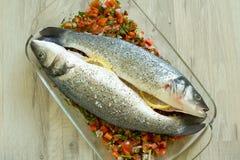 Verse zeebaars met groenten Royalty-vrije Stock Foto