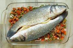 Verse zeebaars met groenten Royalty-vrije Stock Afbeeldingen