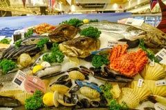 Verse zeevruchten bij supermarkt royalty-vrije stock fotografie