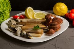 Verse zeevruchten, vongole met citroen en salade op grijze achtergrond stock afbeelding