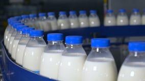 Verse zuivelproducten, flessen die zich op een transportband bewegen Zuivelproducteninstallatie stock video