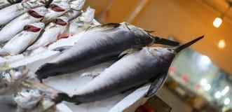 Verse zwaardvissen bij vissenmarkt stock afbeelding