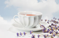 Verse zwarte thee met lavendel royalty-vrije stock afbeelding