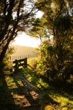 Versehen Sie Eintritt zu gehender Bahn neben asphaltierter Landstraße mit Taktstock- und Drahtzaun, Mahia-Halbinsel, Nordinsel, N Stockfoto