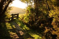 Versehen Sie Eintritt zu gehender Bahn neben asphaltierter Landstraße mit Taktstock- und Drahtzaun, Mahia-Halbinsel, Nordinsel, N Stockbilder