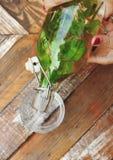 Versement assaisonné de l'eau de menthe fraîche Photographie stock libre de droits