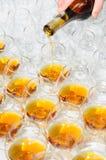 Versement de l'eau-de-vie fine ou du cognac Photographie stock libre de droits