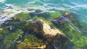 Versenkte Felsen mit Grünalgen unter Michigansee-Wellen stock footage