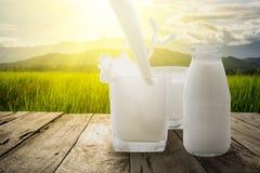 Versez le lait dans une éclaboussure en verre sur la terrasse en bois avec le pré vert et la montagne pendant le matin avec le ra Photo libre de droits