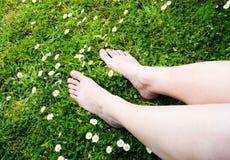 Versheid in een gras Royalty-vrije Stock Afbeeldingen