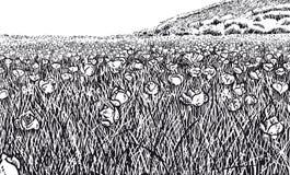 Versión blanco y negro del prado florido Libre Illustration