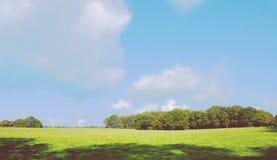 Versión 1 del campo grande y del cielo azul fotografía de archivo