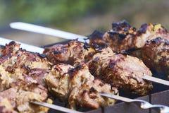 Versión del ruso del kebab Imagen de archivo