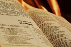 Versi della bibbia Immagini Stock