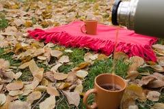 Versi il tè in una tazza durante il picnic Immagine Stock Libera da Diritti