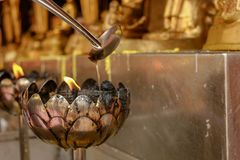 Versi l'olio in lampada della candela in tempio fotografia stock