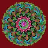 Versieht Mandala mit Federn EINFACHER BURGUNDER-HINTERGRUND ZENTRALE BLUME IM ROSA, IM ROT, IM GRÜN, IM TÜRKIS, IM BLAU, IN DER O lizenzfreie abbildung