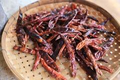 Versier droge Spaanse pepers Thailand bij het dorsen van mand stock foto's