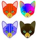 4 versies van een kleurrijk hoofd van een kat Stock Foto