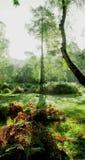 Version artistique 6 de longue ombre photo stock