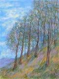 Version 2 de pins de montagne Photo libre de droits