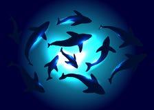 0 version för vektor för eps för tillgänglig bakgrund 8 undervattens- vektor illustrationer