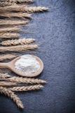 Versione di legno di verticale delle orecchie della segale del grano della farina del cucchiaio Fotografie Stock