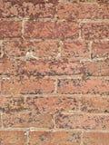 Versleten baksteen II stock afbeeldingen