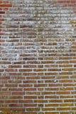 Versleten Doorstane Vuile Rode Bakstenen muurachtergrond Royalty-vrije Stock Afbeeldingen