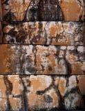 Versleten, roest en doorstane verf op geweven cement. Stock Afbeeldingen
